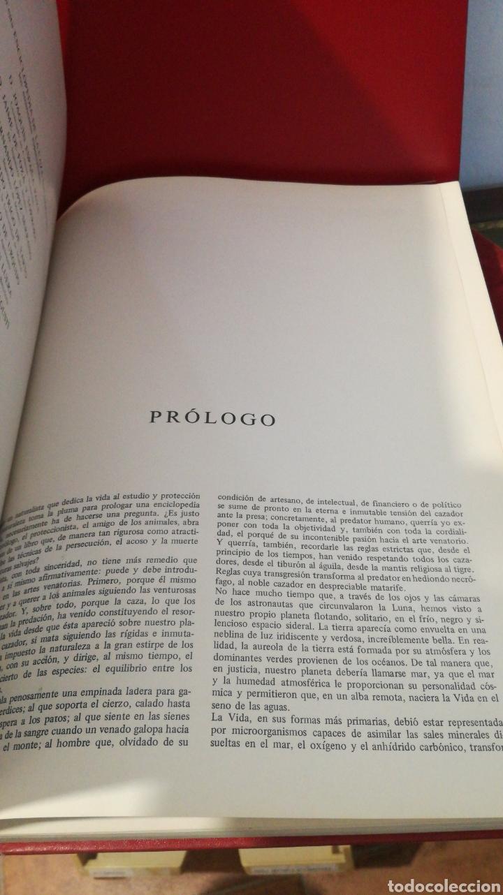 Enciclopedias de segunda mano: enciclopedia de la CAZA - 2 TOMOS - VERGARA - Foto 12 - 288947608