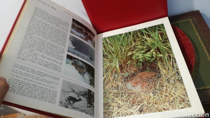 Enciclopedias de segunda mano: enciclopedia de la CAZA - 2 TOMOS - VERGARA - Foto 13 - 288947608