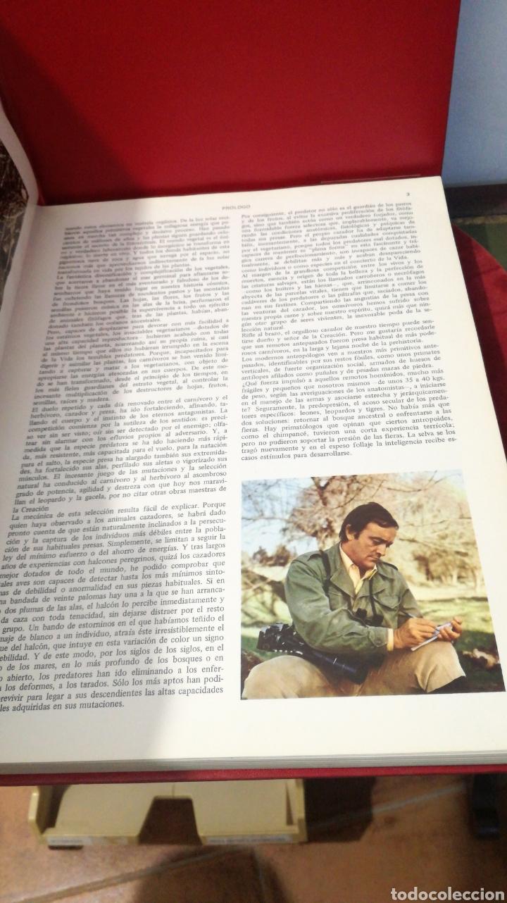 Enciclopedias de segunda mano: enciclopedia de la CAZA - 2 TOMOS - VERGARA - Foto 14 - 288947608
