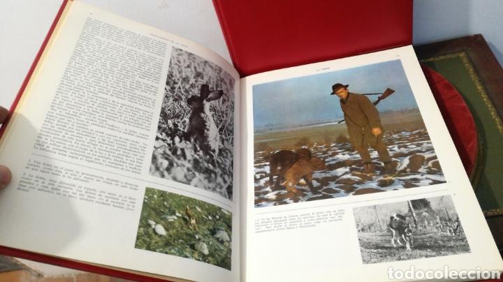 Enciclopedias de segunda mano: enciclopedia de la CAZA - 2 TOMOS - VERGARA - Foto 18 - 288947608