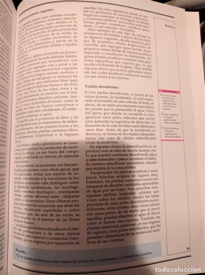 Enciclopedias de segunda mano: Alfa Nauta Programa Educativo Temático. ESO, LOGSE. Ediciones Nauta, 2000. 14 Tomos. - Foto 7 - 289590543