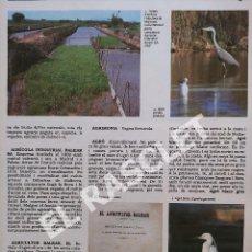 Enciclopedias de segunda mano: ANTIGÜA GRAN ENCICLOPEDIA DE MALLORCA - VOLUMEN 1 - DE LA PAGINA 33 A LA PAGINA 48. Lote 295336043
