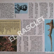 Enciclopedias de segunda mano: ANTIGÜA GRAN ENCICLOPEDIA DE MALLORCA - - DE LA PAGINA 289 A LA PAGINA 304. Lote 295499973