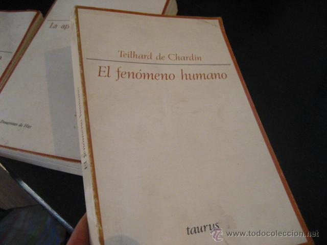 EL FENOMENO HUMANO, TEILHARD DE CHARDIN, TAURUS, RR42 (Libros de Segunda Mano (posteriores a 1936) - Literatura - Ensayo)