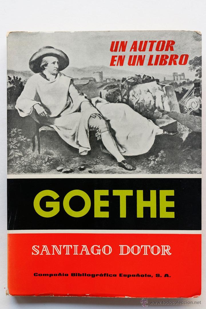 UN AUTOR EN UN LIBRO- GOETHE (Libros de Segunda Mano (posteriores a 1936) - Literatura - Ensayo)