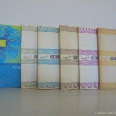 Libros de segunda mano: REVISTA DE CULTURA BRASILEÑA. NUMEROS: 48,49,50,51,52. AÑO 2006 Nº4. VER FOTOGRAFIAS ADJUNTAS. Lote 56364555