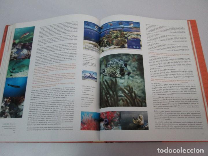 Libros de segunda mano: VOCES DE LA CULTURA. TOMO 1 Y 2. ANGEL COLLADO SCHWARZ. DEDICADOS POR EL AUTOR. VER FOTOGRAFIAS - Foto 56 - 84635444