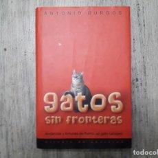 Libros de segunda mano: GATOS SIN FRONTERAS, ANDANZAS Y FORTUNAS DE REMO, UN GATO CALLEJERO DE ANTONIO BURGOS 2003. . Lote 133054210