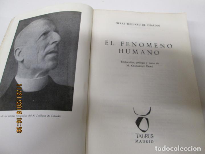 Libros de segunda mano: EL FENÓMENO HUMANO - TEILHARD DE CHARDIN - TAURUS - Foto 2 - 142305802
