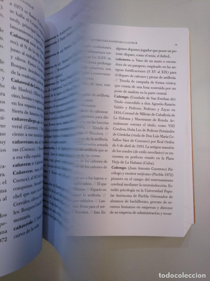 Libros de segunda mano: LA VIRGULLINA. HOMENAJE A LA LETRA Ñ. VICTORIA MARTINEZ LOPEZ. FUNDACION SAN MILLAN. La Rioja TDK378 - Foto 2 - 158309998