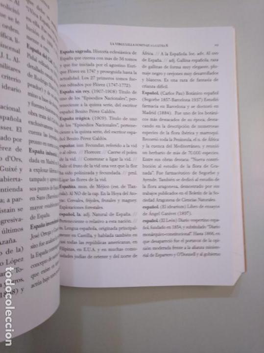 Libros de segunda mano: LA VIRGULLINA. HOMENAJE A LA LETRA Ñ. VICTORIA MARTINEZ LOPEZ. FUNDACION SAN MILLAN. La Rioja TDK378 - Foto 3 - 158309998