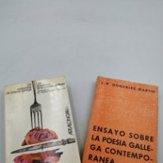 Libros de segunda mano: LOS NOVÍSIMOS DE LA POESÍA GALLEGA Y ENSAYOS SOBRE LA POESÍA GALLEGA CONTEMPORÁNEA. Lote 194709621