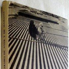 Libros de segunda mano: 1964. LOS ÁRABES DE AYER Y DE MAÑANA. JACQUES BERQUE. FCE. FONDO DE CULTURA ECONÓMICA. MÉXICO. . Lote 194783977