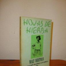 Libros de segunda mano: HOJAS DE HIERBA - WALT WHITMAN - TRADUCCIÓN DE JORGE LUIS BORGES - LUMEN, 1972. Lote 195096453
