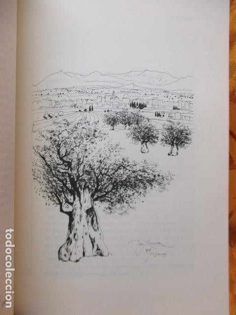 Libros de segunda mano: Sis visions sobre Josep Pla - Narcís Jordi Aragó, Josep Martinell, Jaume Reixach, Antoni M. Rigau, R - Foto 12 - 236801850
