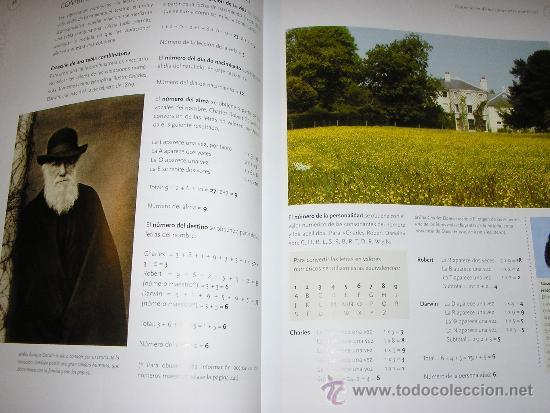 Libros de segunda mano: NUMEROLOGIA, por William Field - Parragón - 2009 - NUEVO!! RARO!! - Foto 5 - 38933142
