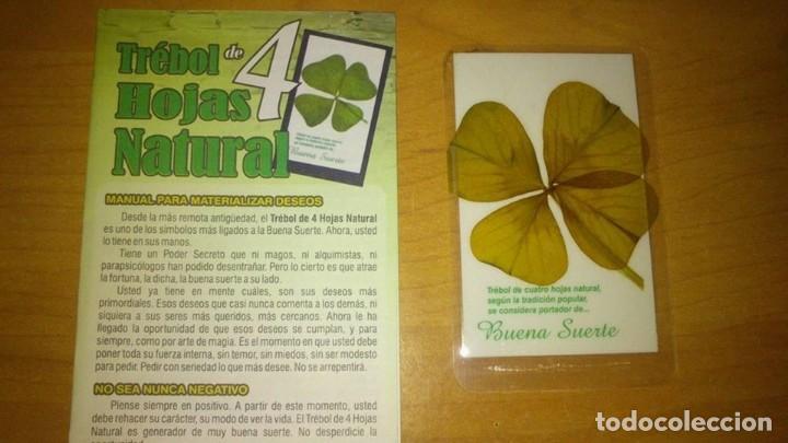 Libros de segunda mano: TREBOL DE LA SUERTE DE 4 HOJAS AUTENTICO + INSTRUCCIONES DE USO -- amuleto suerte -- - Foto 2 - 132389862