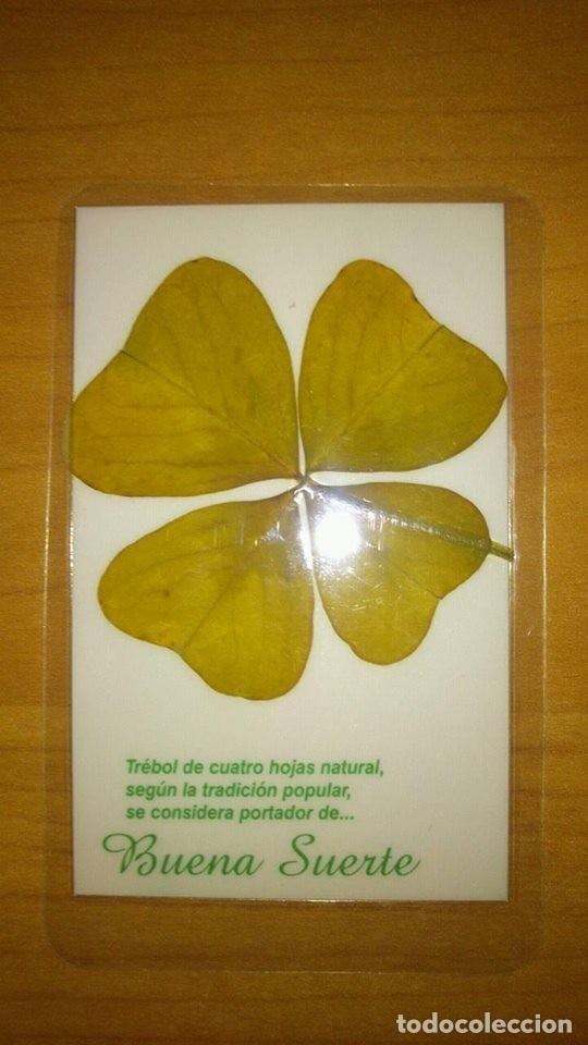 Libros de segunda mano: TREBOL DE LA SUERTE DE 4 HOJAS AUTENTICO + INSTRUCCIONES DE USO -- amuleto suerte -- - Foto 3 - 132389862