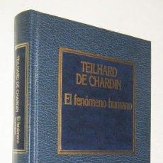 Libros de segunda mano: EL FENOMENO HUMANO - TEILHARD DE CHARDIN. Lote 191193161