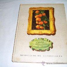 Libros de segunda mano: ESPAÑA, PAIS AGRICOLA, GANADERO Y FORESTAL. MINISTERIO DE AGRICULTURA, 1951. Lote 27358925