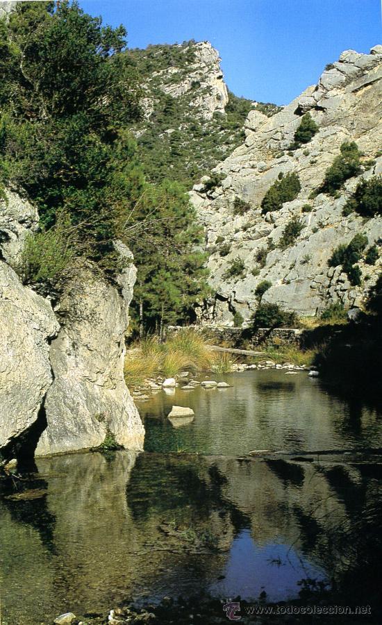 Libros de segunda mano: Catalunya a FONS – Parcs Naturals - Foto 2 - 30527976