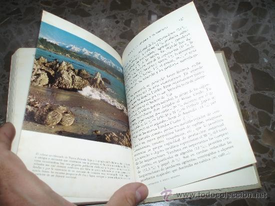 Libros de segunda mano: PANORAMA DE LA GEOGRAFIA UNIVERSAL. AUSTRALIA Y NUEVA ZELANDA. 27.EDICIONES MORETON SA., AÑOS 60 - Foto 2 - 37225887