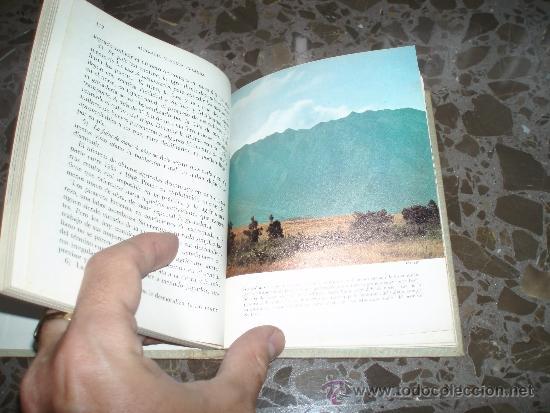 Libros de segunda mano: PANORAMA DE LA GEOGRAFIA UNIVERSAL. AUSTRALIA Y NUEVA ZELANDA. 27.EDICIONES MORETON SA., AÑOS 60 - Foto 3 - 37225887