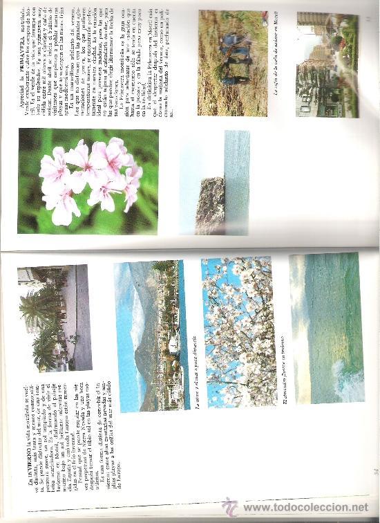 Libros de segunda mano: INTERIOR LIBRO - Foto 2 - 39245874