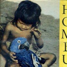 Libros de segunda mano: SCHULTZ : HOMBU - INDIAN LIFE IN THE BRAZILIAN JUNGLE (1962) GRAN FORMATO, MUY ILUSTRADO. Lote 41422544