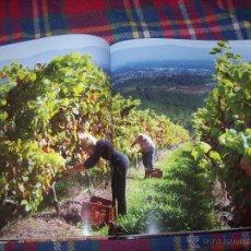 Livres d'occasion: RÍAS BAIXAS.EL VINO DEL MAR. O VIÑO DO MAR.FOTOGRAFÍAS : XURXO LOBATO.2013. ÚNICO EN TC!!!!!.. Lote 50077585