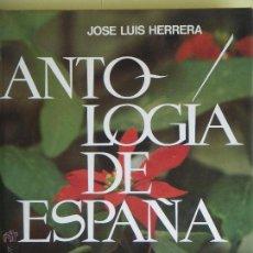 Libros de segunda mano: ANTOLOGIA DE ESPAÑA - JOSE LUIS HERRERA, PROLOGO DE JULIAN MARIAS - CIRCULO LECTORES 1982 1ª EDICION. Lote 53309640