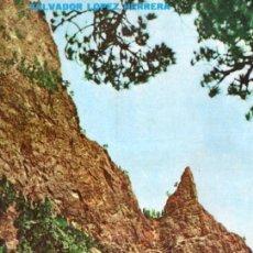 Libros de segunda mano: SALVADOR LOPEZ HERRERA : LAS ISLAS CANARIAS A TRAVÉS DE LA HISTORIA (1972) MUY ILUSTRADO. Lote 54804945
