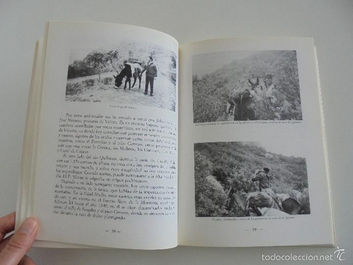 Libros de segunda mano: VIAJE EN BURRO POR LA SIERRA DE FRANCIA ENTRESIERRAS Y LAS BARDAS. RAMON GRANDE DEL BRIO. - Foto 13 - 56475432
