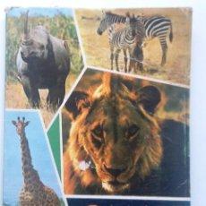 Libros de segunda mano: OMARI. DIARIO DE UN SAFARISTA INGENUO. 1966. MUEBLES LA FABRICA. NUMEROSAS FOTOGRAFICAS DE AFRICA. Lote 57341845