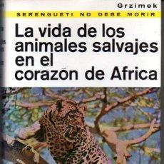 Livros em segunda mão: GRZIMEK : LA VIDA DE LOS ANIMALES SALVAJES EN EL CORAZÓN DE ÁFRICA (NOGUER, 1961) COMO NUEVO. Lote 57728119