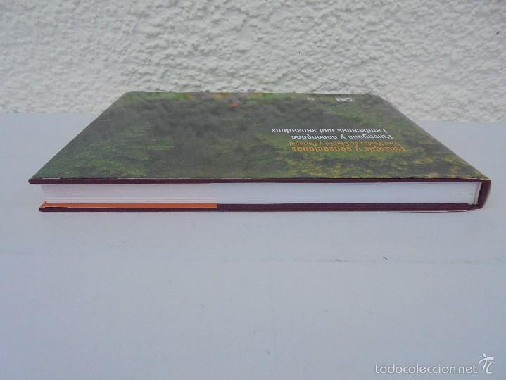 Libros de segunda mano: PAISAJES Y SENSACIONES VIAS VERDES DE ESPAÑA Y PORTUGAL. LANDSCAPES AND SENSATIONS. VER FOTOS. - Foto 6 - 57962130