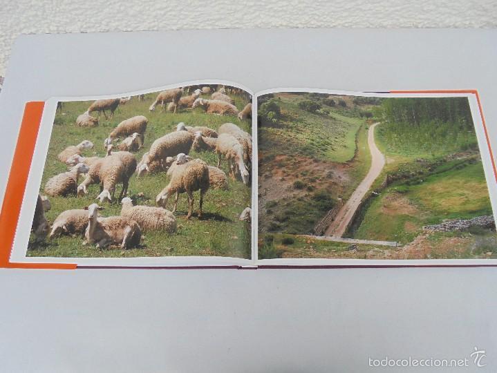 Libros de segunda mano: PAISAJES Y SENSACIONES VIAS VERDES DE ESPAÑA Y PORTUGAL. LANDSCAPES AND SENSATIONS. VER FOTOS. - Foto 21 - 57962130
