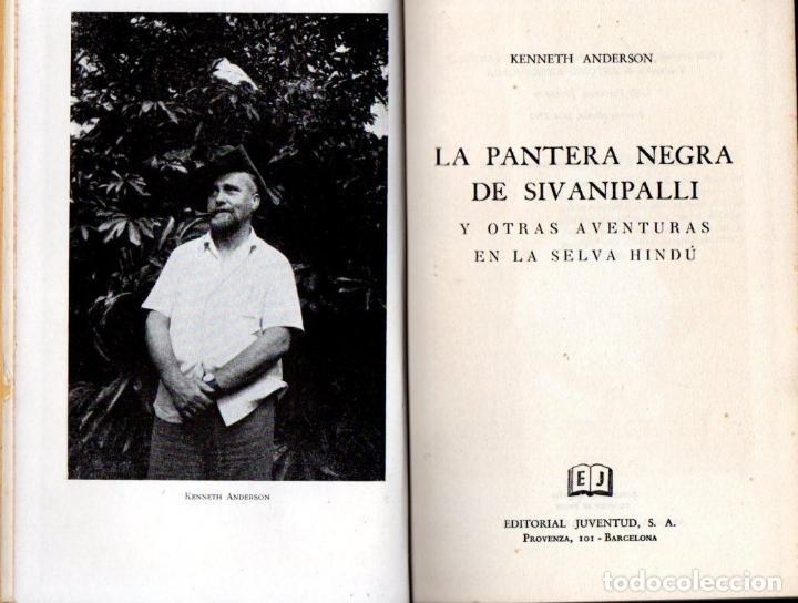 ANDERSON : LA PANTERA NEGRA DE SIVANIPALLI (JUVENTUD, 1961) (Libros de Segunda Mano - Geografía y Viajes)