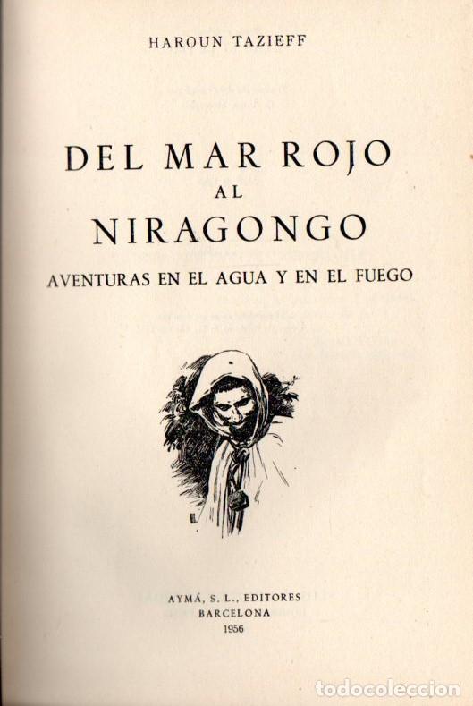 HAROUN TAZIEFF : DEL MAR ROJO AL NIRAGONGO (AYMÁ, 1956) (Libros de Segunda Mano - Geografía y Viajes)