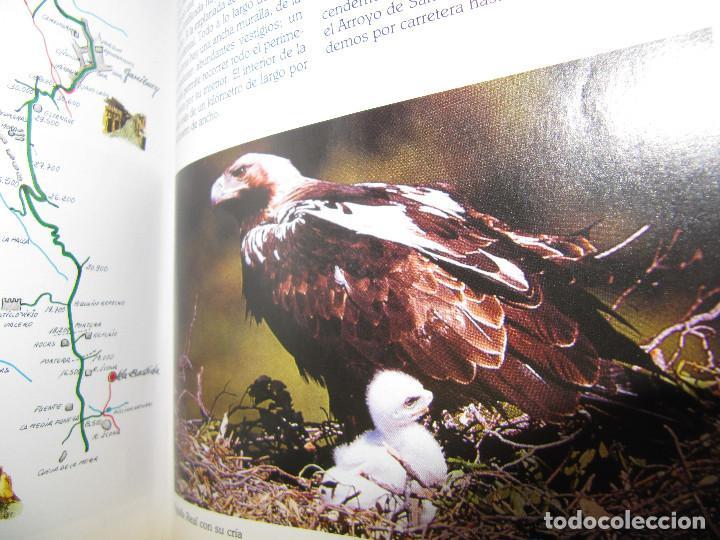 Libros de segunda mano: LA SIERRA DE FRANCIA PASO A PASO - Foto 3 - 68496597