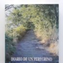 Libros de segunda mano: DIARIO DE UN PEREGRINO DEL SIGLO XXI - CAMPO OVIDIO - CAMINO DE SANTIAGO - 2002. Lote 78257241