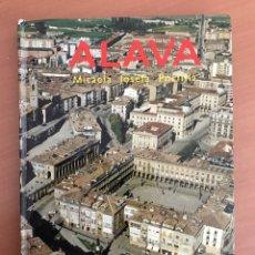 Libros de segunda mano: ALAVA GUIA TURÍSTICA AÑOS 70. 160 PÁGINAS. Lote 79054021