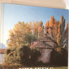 Libros de segunda mano: ERMITAS DE NAVARRA - 1983 - TAPAS DURAS - 279 PAGINAS. Lote 91012110