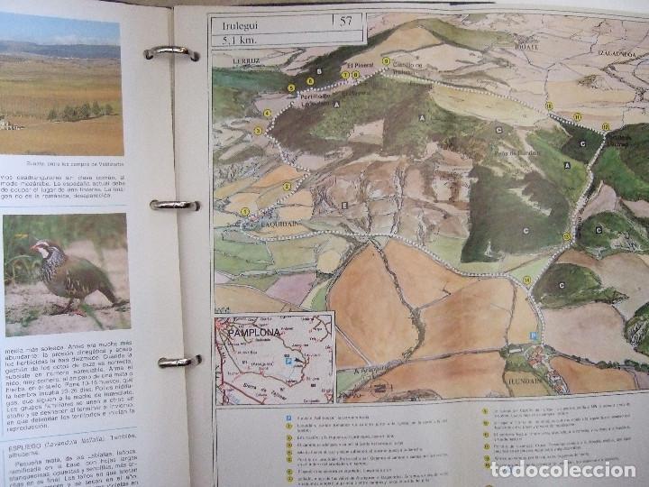 Libros de segunda mano: NAVARRA PASEOS NATURALISTICOS - 1981 - TOMOS I Y II - FICHAS CON PASEOS POR NAVARRA - - Foto 5 - 91121090