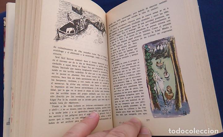 Libros de segunda mano: El mundo en color. Los países nórdicos. Dinamarca, Noruega, Suecia y Finlandia. Ediciones Castilla. - Foto 9 - 94756463