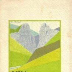 Libros de segunda mano: GUÍA TURÍSTICA DE NAVARRA. PAMPLONA, 1929. Lote 95782315