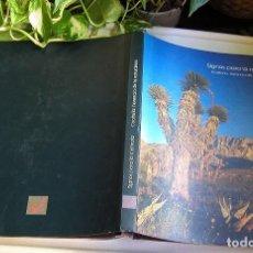 Libros de segunda mano: COAHUILA HERENCIA DE LA NATURALEZA SIGNOS PARA LA MEMORIA MÉXICO PRIMERA EDICIÓN 1997 SOLO 10.000 . Lote 96104719