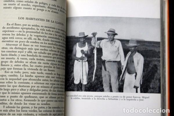 Libros de segunda mano: AL SUR DEL CARIBE - ALBERTO VAZQUEZ - FIGUEROA - 1965 - 1ª EDICION - - RARO - Foto 2 - 101269811