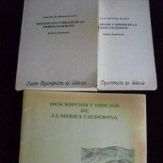 Libros de segunda mano: DESCRIPCION Y DIBUJOS DE LA SIERRA CALDERONA,1992 Y COL. DE DIBUJOS,CARPETA 85 LAMINAS 20X15 0010. Lote 111972246