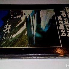 Libros de segunda mano: BELLEZAS NATURALES DEL PIRINEO ARAGONES-SILVA Y MORA, ALVARO-1978. Lote 110064795
